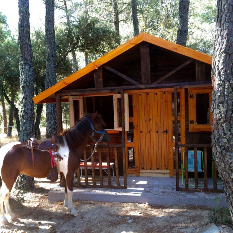 alquiler-vacacional-casita-madera-poni-770x770